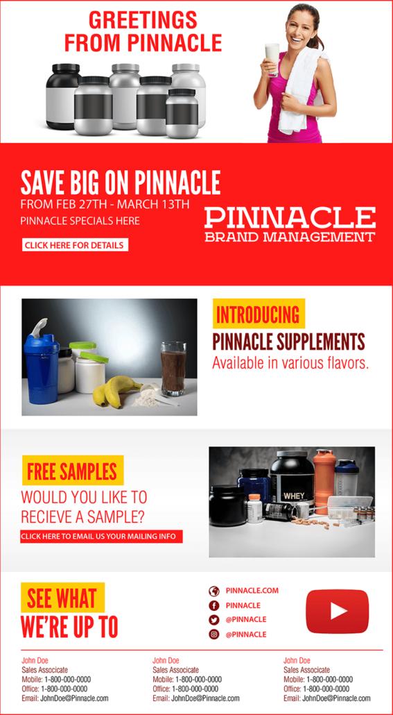 pinnacle brand management email marketing